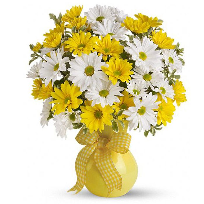 White & Yellow Daisies