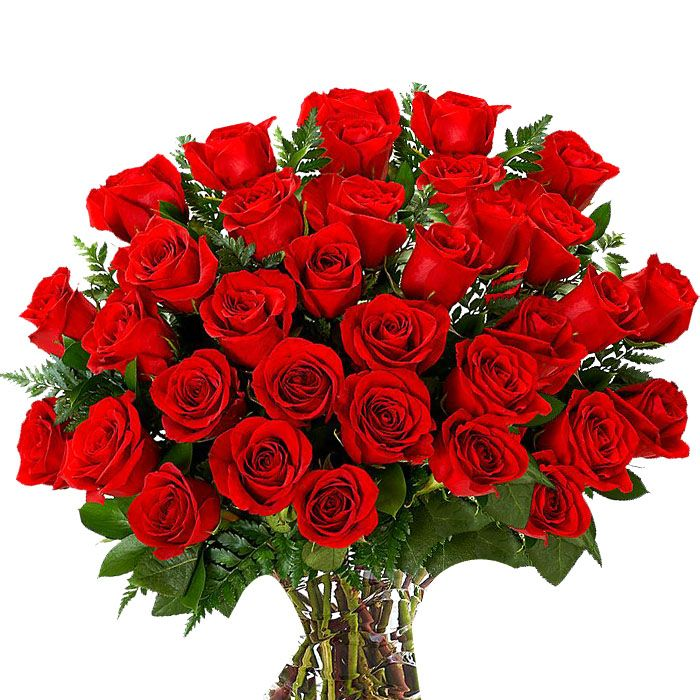 100 Local Red Roses