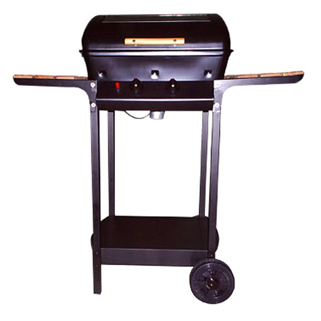 Gas BBQ Grill  (Large)